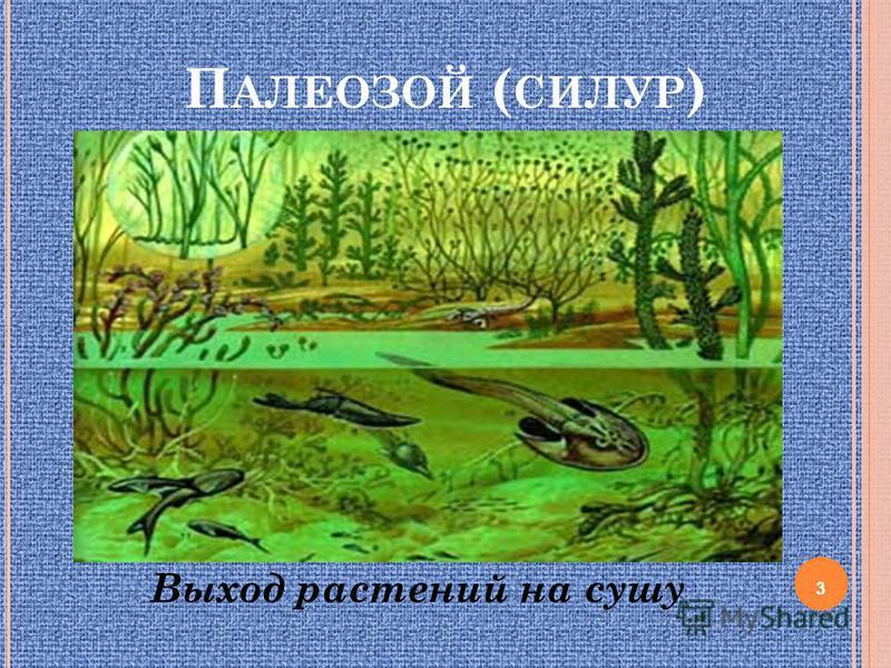 П АЛЕОЗОЙ ( СИЛУР ) Выход растений на сушу 3