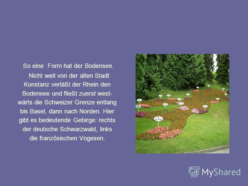 So eine Form hat der Bodensee. Nicht weit von der alten Stadt Konstanz verläßt der Rhein den Bodensee und fließt zuerst west- wärts die Schweizer Grenze entlang bis Basel, dann nach Norden. Hier gibt es bedeutende Gebirge: rechts der deutsche Schwarz