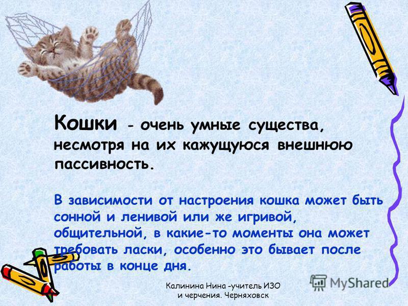 Калинина Нина -учитель ИЗО и черчения. Черняховск Кошки - очень умные существа, несмотря на их кажущуюся внешнюю пассивность. В зависимости от настроения кошка может быть сонной и ленивой или же игривой, общительной, в какие-то моменты она может треб