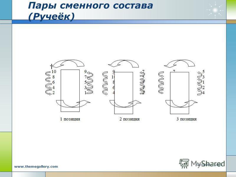 Пары сменного состава (Ручеёк) Company Logo www.themegallery.com
