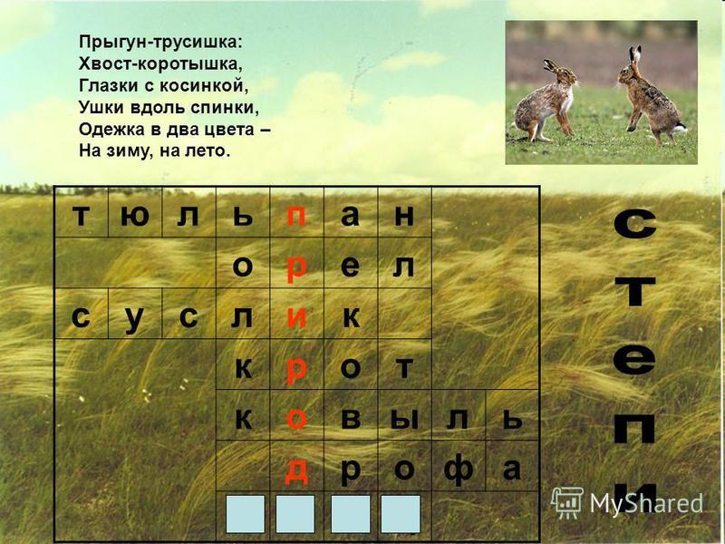 тюльпан орел суслик крот ковыль дрофа заяц Прыгун-трусишка: Хвост-коротышка, Глазки с косинкой, Ушки вдоль спинки, Одежка в два цвета – На зиму, на лето.