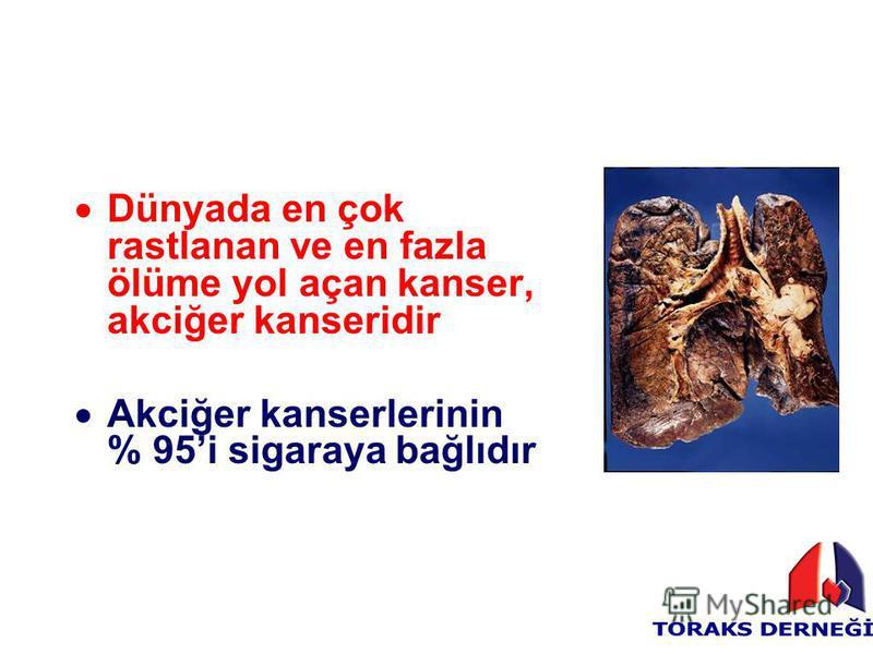 Dünyada en çok rastlanan ve en fazla ölüme yol açan kanser, akciğer kanseridir Akciğer kanserlerinin % 95i sigaraya bağlıdır