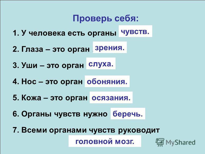 Проверь себя: 1. У человека есть органы … 2. Глаза – это орган … 3. Уши – это орган … 4. Нос – это орган … 5. Кожа – это орган … 6. Органы чувств нужно … чувств. зрения. слуха. обоняния. осязания. беречь. 7. Всеми органами чувств руководит … головной