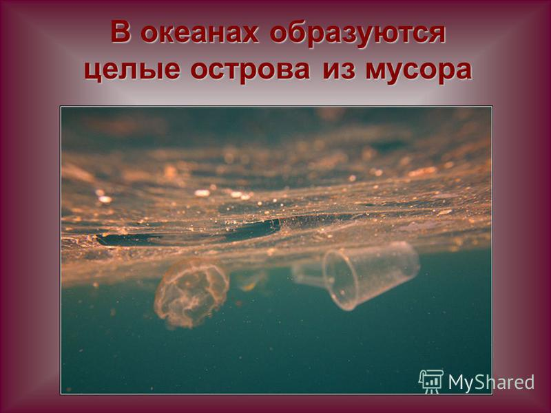 В океанах образуются целые острова из мусора