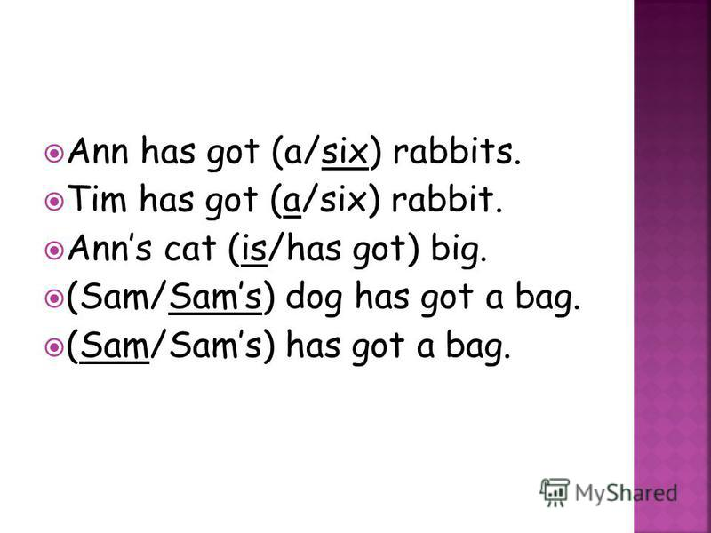 Ann has got (a/six) rabbits. Tim has got (a/six) rabbit. Anns cat (is/has got) big. (Sam/Sams) dog has got a bag. (Sam/Sams) has got a bag.