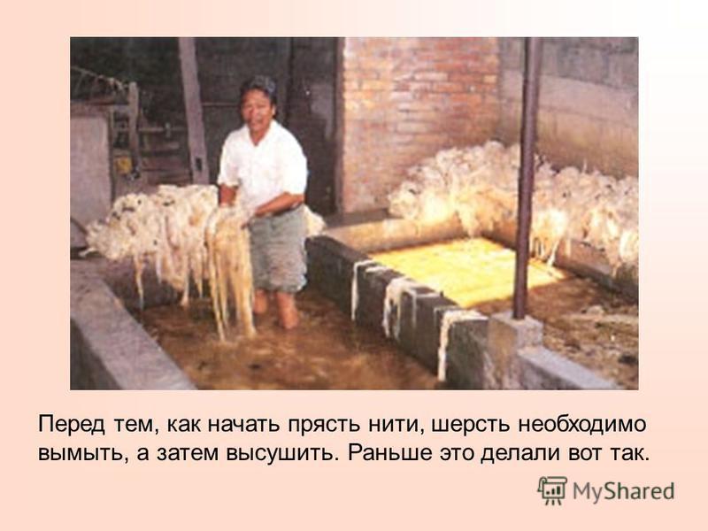 До того как появились электрические ножницы овец стригли вот такими