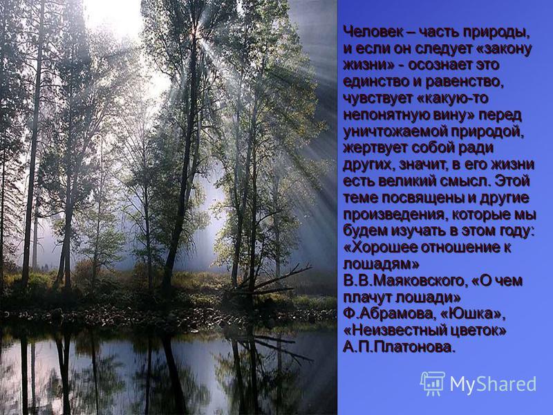 Человек – часть природы, и если он следует «закону жизни» - осознает это единство и равенство, чувствует «какую-то непонятную вину» перед уничтожаемой природой, жертвует собой ради других, значит, в его жизни есть великий смысл. Этой теме посвящены и