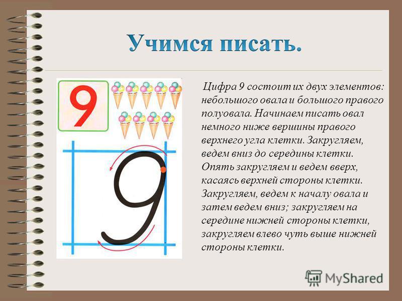 Цифра 9 состоит их двух элементов: небольшого овала и большого правого полуовала. Начинаем писать овал немного ниже вершины правого верхнего угла клетки. Закругляем, ведем вниз до середины клетки. Опять закругляем и ведем вверх, касаясь верхней сторо