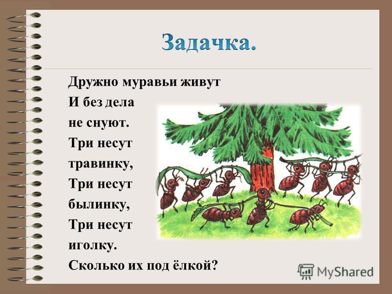 Дружно муравьи живут И без дела не снуют. Три несут травинку, Три несут былинку, Три несут иголку. Сколько их под ёлкой?