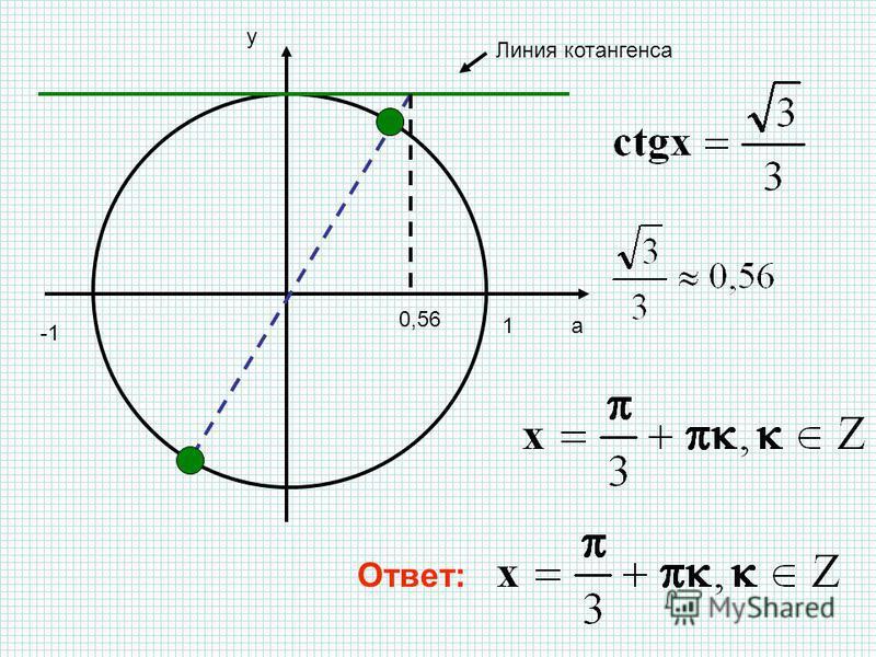 a y 1 Линия котангенса 0,56 Ответ: