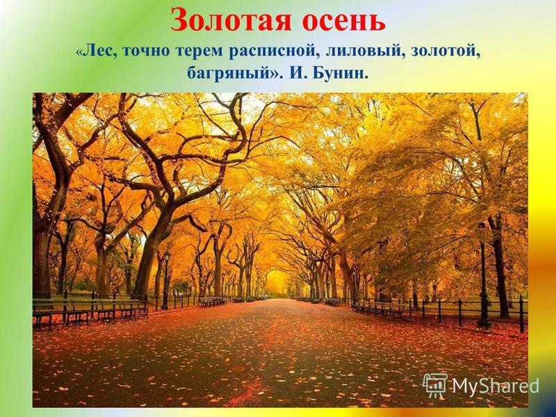 Ранняя осень