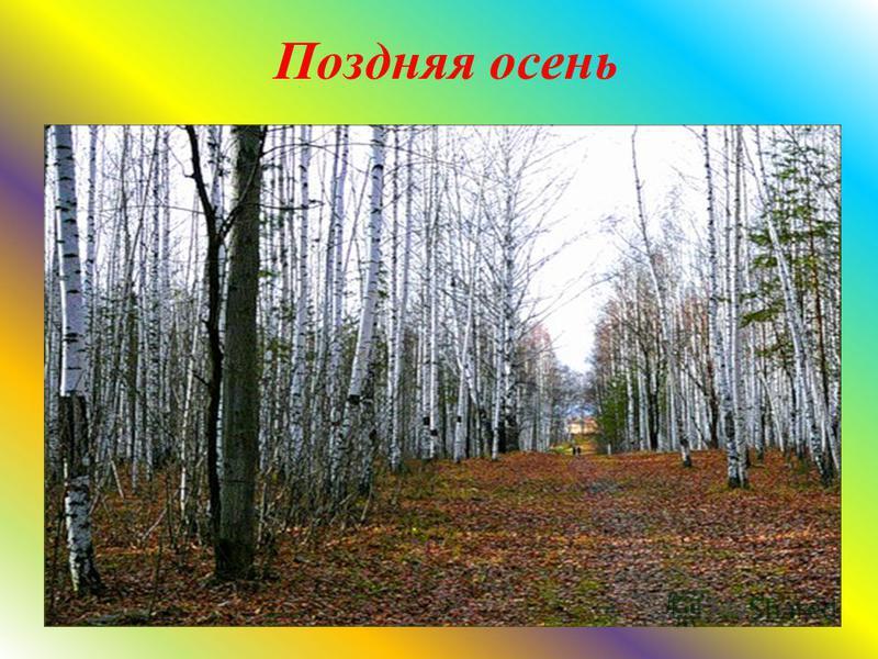 Золотая осень « Лес, точно терем расписной, лиловый, золотой, багряный». И. Бунин.