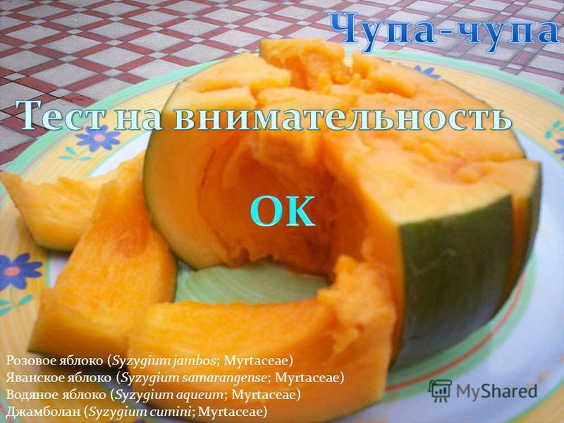 Розовое яблоко (Syzygium jambos; Myrtaceae) Яванское яблоко (Syzygium samarangense; Myrtaceae) Водяное яблоко (Syzygium aqueum; Myrtaceae) Джамболан (Syzygium cumini; Myrtaceae)