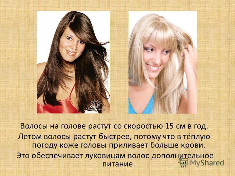 Волосы на голове растут со скоростью 15 см в год. Летом волосы растут быстрее, потому что в тёплую погоду коже головы приливает больше крови. Это обеспечивает луковицам волос дополнительное питание.