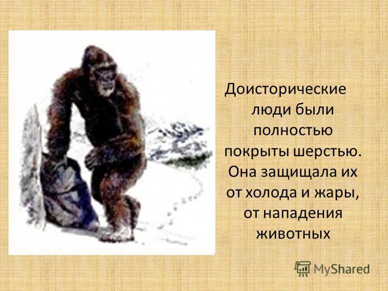 Доисторические люди были полностью покрыты шерстью. Она защищала их от холода и жары, от нападения животных