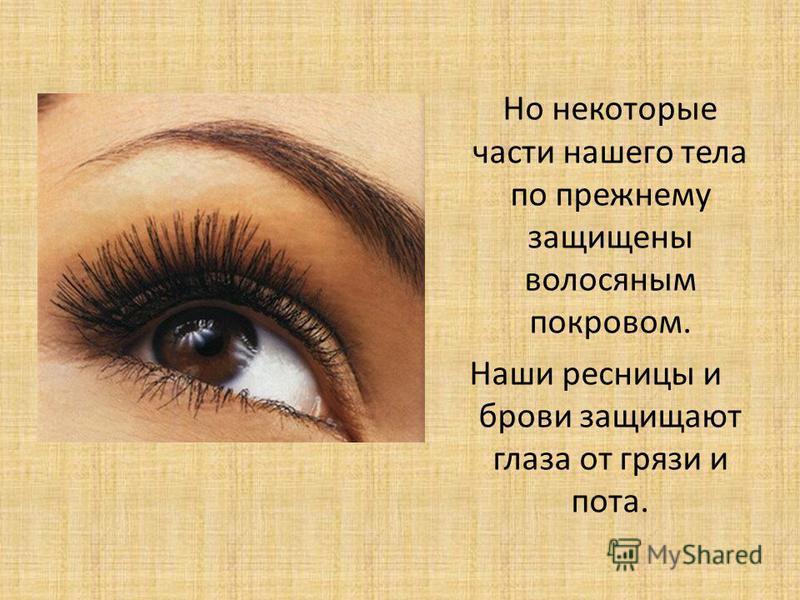 Но некоторые части нашего тела по прежнему защищены волосяным покровом. Наши ресницы и брови защищают глаза от грязи и пота.