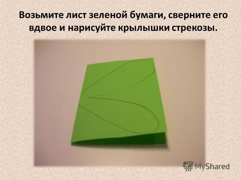 Возьмите лист зеленой бумаги, сверните его вдвое и нарисуйте крылышки стрекозы.