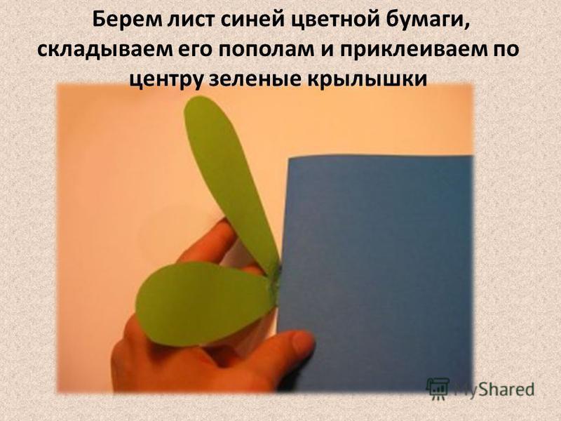 Берем лист синей цветной бумаги, складываем его пополам и приклеиваем по центру зеленые крылышки