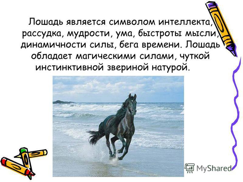 Лошадь является символом интеллекта, рассудка, мудрости, ума, быстроты мысли, динамичности силы, бега времени. Лошадь обладает магическими силами, чуткой инстинктивной звериной натурой.