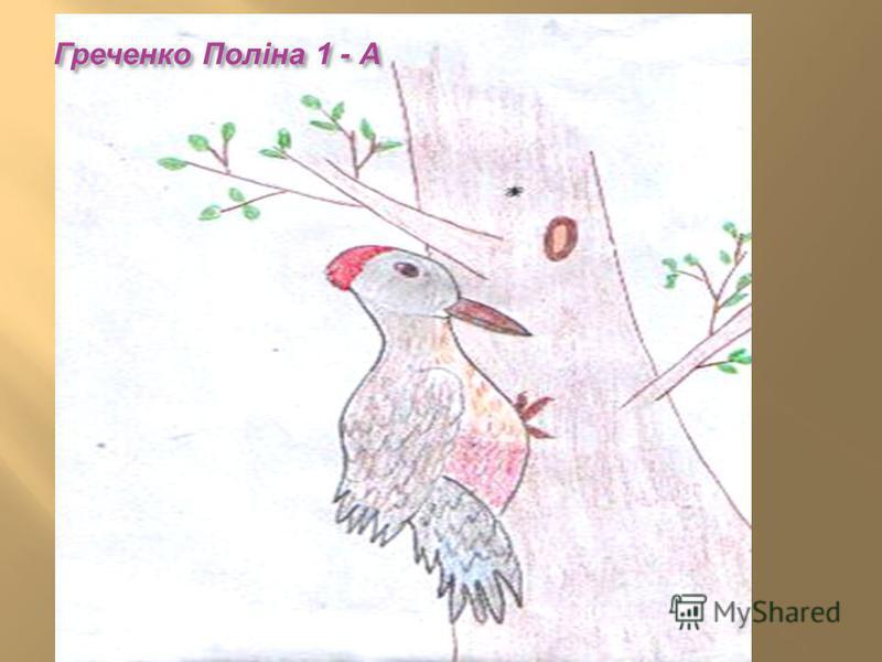 Греченко Поліна 1 - А