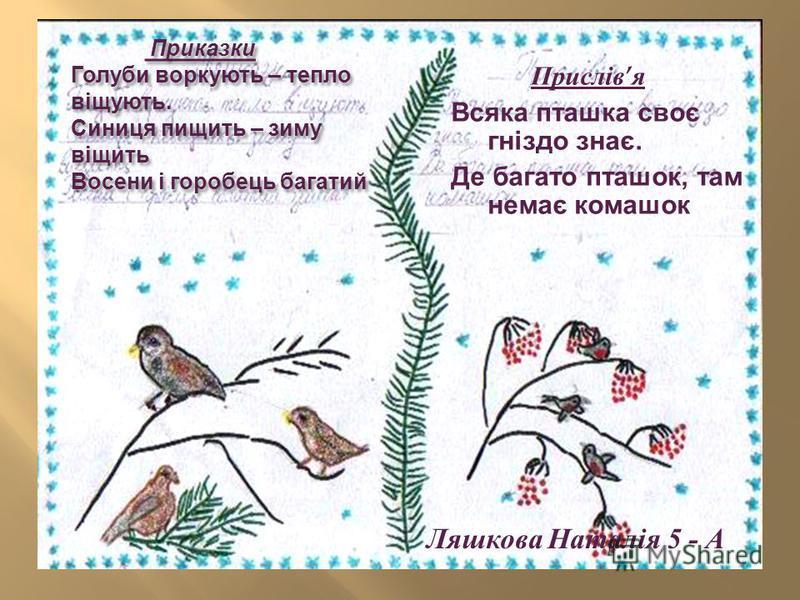 Приказки Голуби воркують – тепло віщують. Синиця пищить – зиму віщить Восени і горобець багатий Приказки Голуби воркують – тепло віщують. Синиця пищить – зиму віщить Восени і горобець багатий Ляшкова Наталія 5 - А Прислів я Всяка пташка своє гніздо з