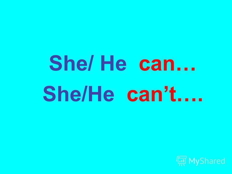 She/ He can… She/He cant….