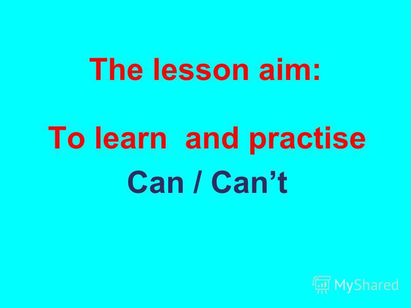 The lesson aim: To learn and practise Can / Cant