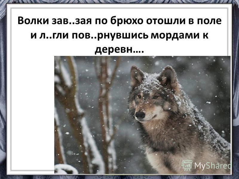 Волки зав..зая по брюхо отошли в поле и л..г клипов..ринувшись мордами к деревуи….