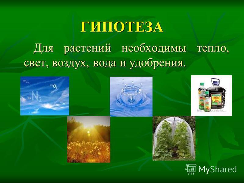 ГИПОТЕЗА Для растений необходимы тепло, свет, воздух, вода и удобрения. Для растений необходимы тепло, свет, воздух, вода и удобрения.