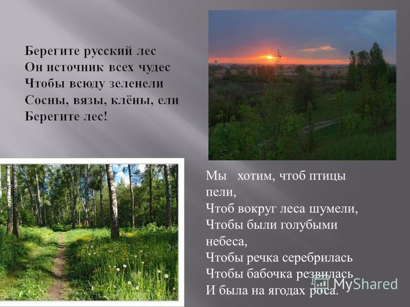 Мы хотим, чтоб птицы пели, Чтоб вокруг леса шумели, Чтобы были голубыми небеса, Чтобы речка серебрилась Чтобы бабочка резвилась И была на ягодах роса.