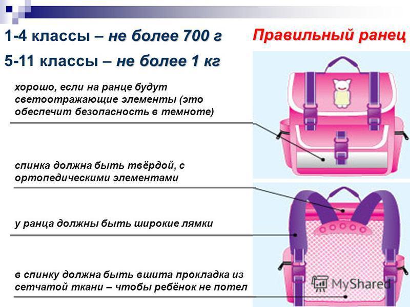 Сколько весит ранец школьника?