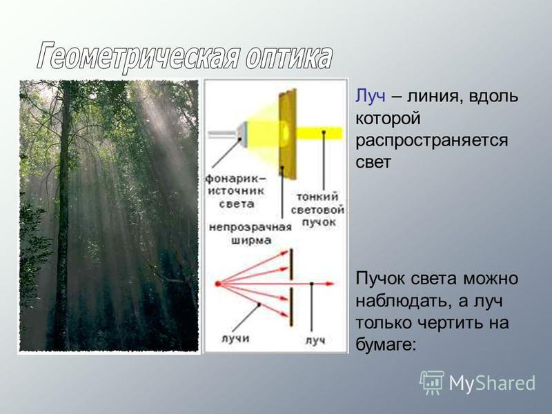 Луч – линия, вдоль которой распространяется свет Пучок света можно наблюдать, а луч только чертить на бумаге: