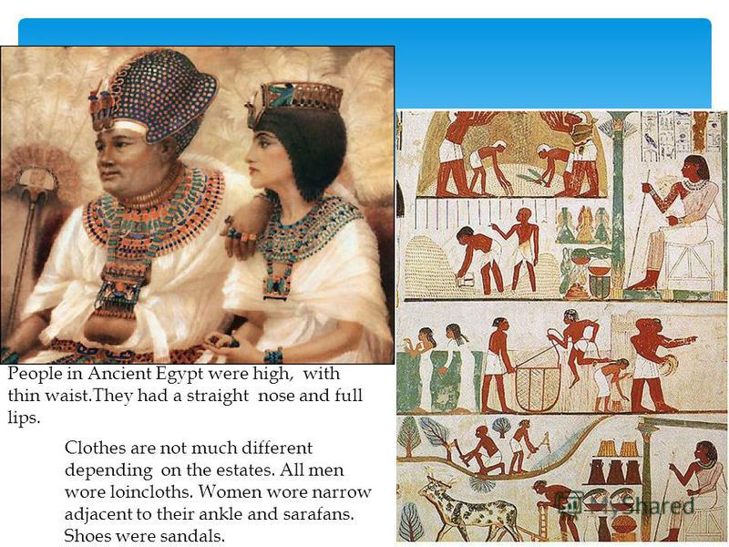 People in Ancient Egypt were high, with thin waist.They had a straight nose and full lips. Clothes are not much different depending on the estates. All men wore loincloths. Women wore narrow adjacent to their ankle and sarafans. Shoes were sandals.