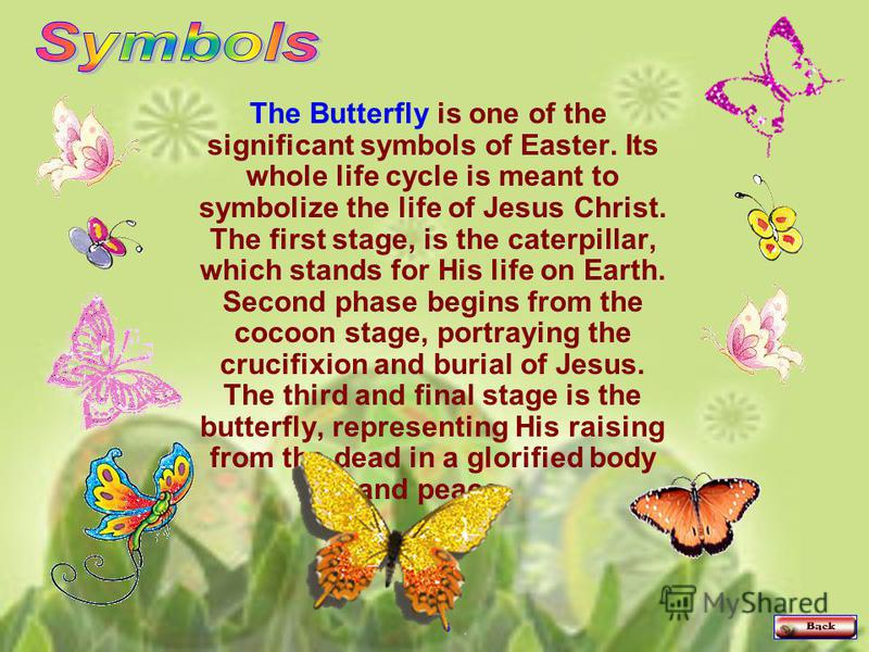 The Butterfly is one of the significant symbols of Easter. Its whole life cycle is meant to symbolize the life of Jesus Christ. The first stage, is the caterpillar, which stands for His life on Earth. Second phase begins from the cocoon stage, portra
