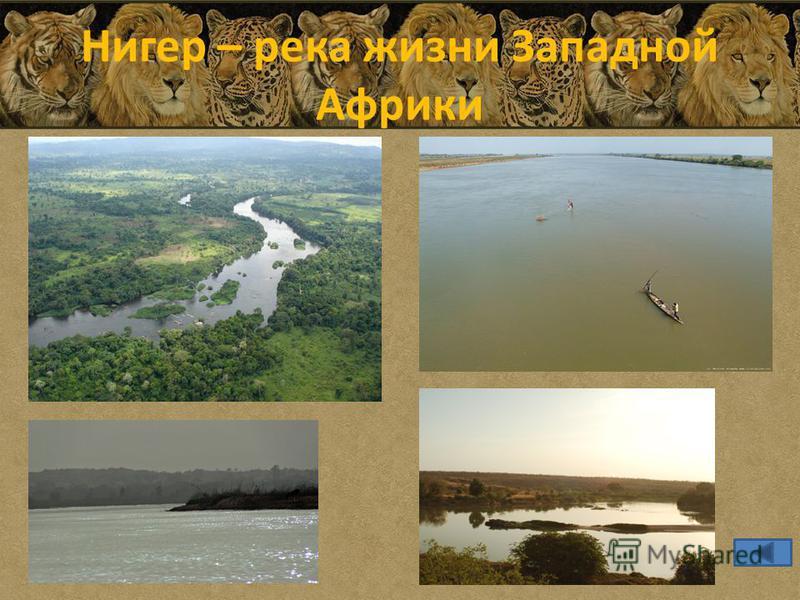 Нигер – река жизни Западной Африки
