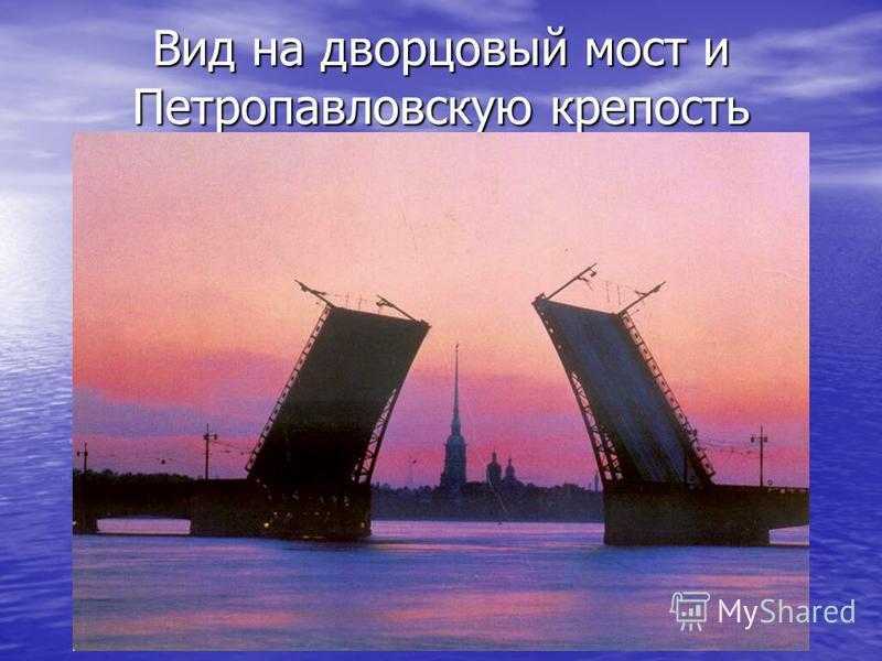 Вид на дворцовый мост и Петропавловскую крепость