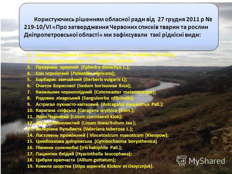 Користуючись рішенням обласної ради від 27 грудня 2011 р 219-10/VI «Про затвердження Червоних списків тварин та рослин Дніпропетровської області» ми зафіксували такі рідкісні види: 1.Щитник чоловічий (Dryopteris filix mas, або Aspidium filix mas); 2.