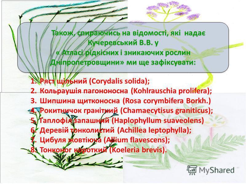 Також, спираючись на відомості, які надає Кучеревський В.В. у « Атласі рідкісних і зникаючих рослин Дніпропетровщини» ми ще зафіксувати: Також, спираючись на відомості, які надає Кучеревський В.В. у « Атласі рідкісних і зникаючих рослин Дніпропетровщ
