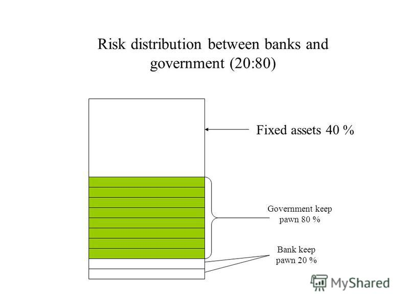 Risk distribution between banks and government (20:80) Fixed assets 40 % Government keep pawn 80 % Bank keep pawn 20 %