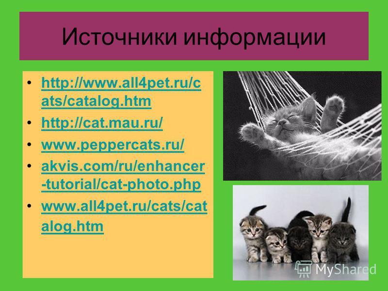 http://www.all4pet.ru/c ats/catalog.htmhttp://www.all4pet.ru/c ats/catalog.htm http://cat.mau.ru/ www.peppercats.ru/ akvis.com/ru/enhancer -tutorial/cat-photo.phpakvis.com/ru/enhancer -tutorial/cat-photo.php www.all4pet.ru/cats/cat alog.htmwww.all4pe