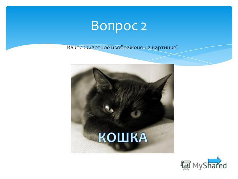 Вопрос 2 Какое животное изображено на картинке?