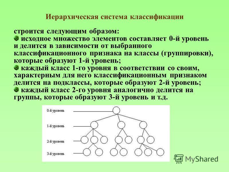 Иерархическая система классификации строится следующим образом: исходное множество элементов составляет 0-й уровень и делится в зависимости от выбранного классификационного признака на классы (группировки), которые образуют 1-й уровень; каждый класс