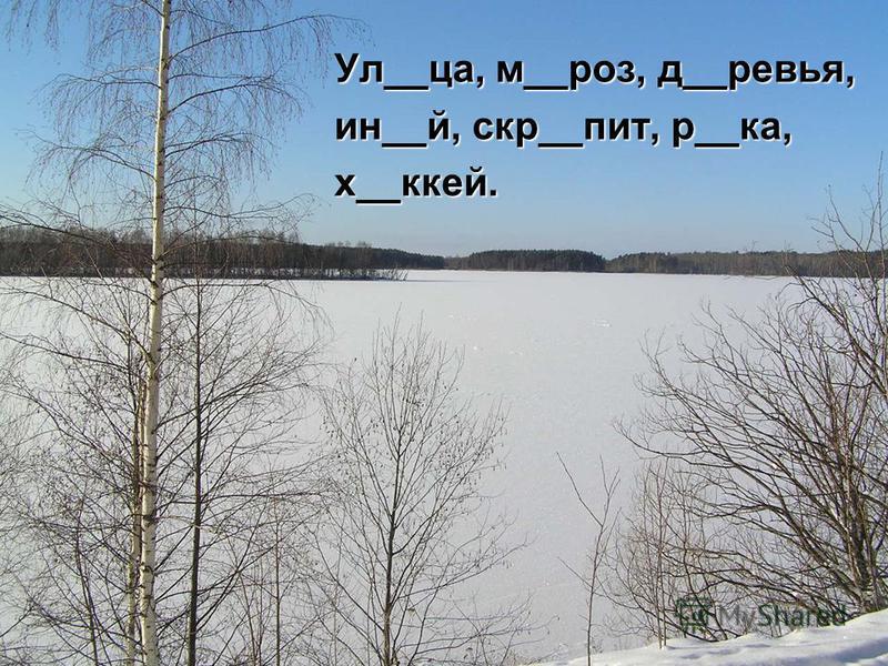 Ул__ца, м__роз, д__ревья, ин__й, скр__пит, р__ка, х__клей.