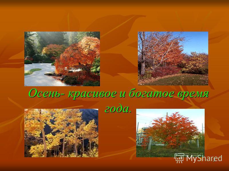 3 Осень- красивое и богатое время года.