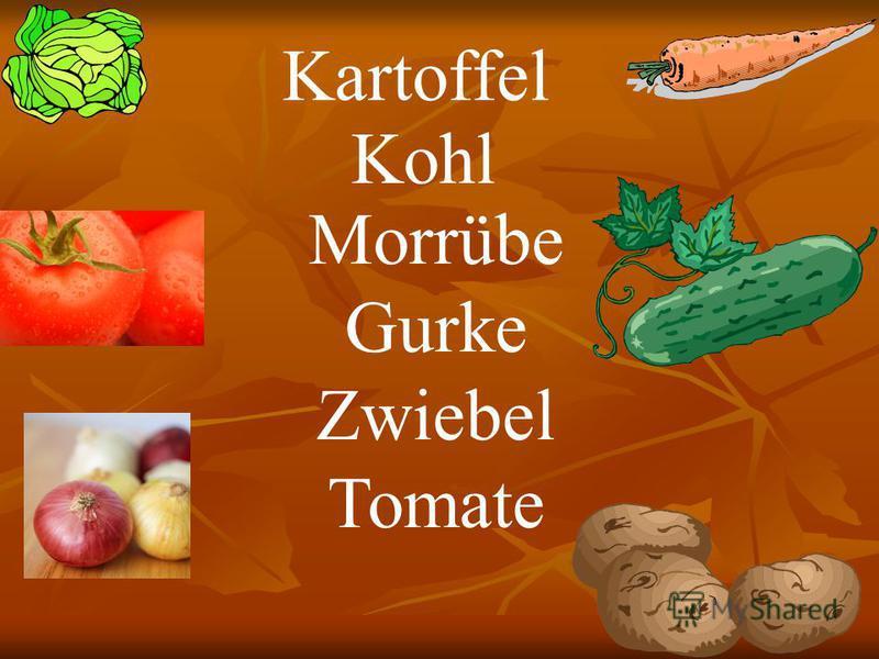 Morrübe Gurke Zwiebel Tomate Kartoffel Kohl