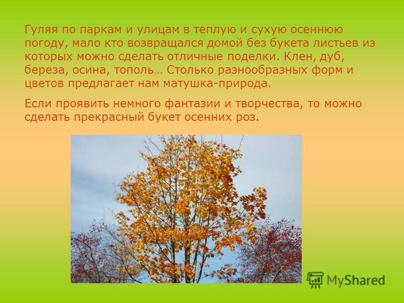 Гуляя по паркам и улицам в теплую и сухую осеннюю погоду, мало кто возвращался домой без букета листьев из которых можно сделать отличные поделки. Клен, дуб, береза, осина, тополь… Столько разнообразных форм и цветов предлагает нам матушка-природа. Е