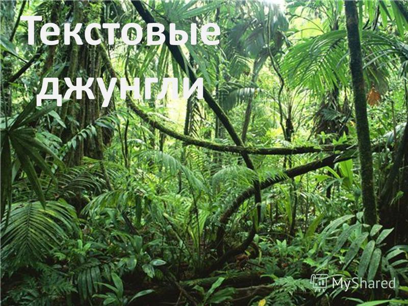 Текстовые джунгли