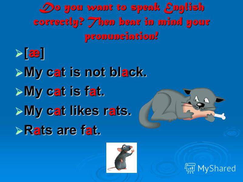 Do you want to speak English correctly? Then bear in mind your pronunciation! [æ] [æ] My cat is not black. My cat is not black. My cat is fat. My cat is fat. My cat likes rats. My cat likes rats. Rats are fat. Rats are fat.