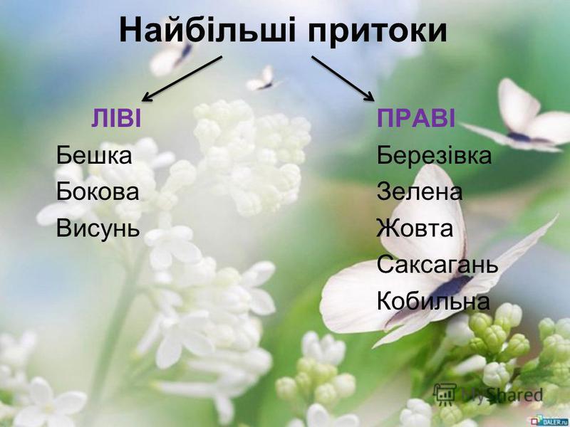 Найбільші притоки ЛІВІПРАВІ БешкаБерезівка БоковаЗелена ВисуньЖовта Саксагань Кобильна