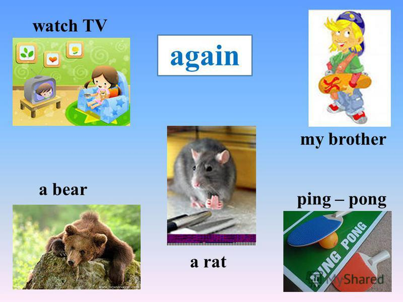 watch TV a bear ping – pong a rat my brother again